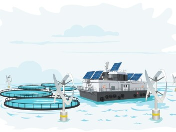 Could this be the fish farms of the future? (Illustration: Ole André Haug, UiS/NettOp)