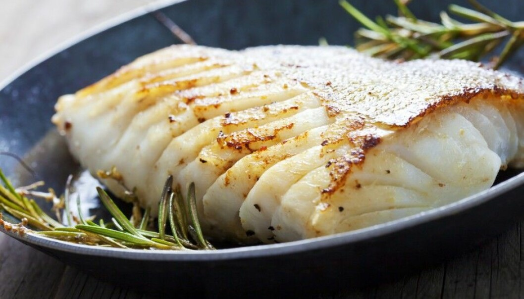 Lean fish like cod have been overshadowed by the acclaimed health benefits of fatty fish. But lean fish may be better for your health, especially for overweight men, a new study suggests. (Photo: Shutterstock / NTB / Scanpix)