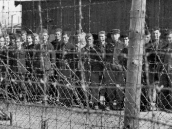 Soviet prisoners of war behind barbed wire at Falstad Camp May 8th 1945. The picture is probably taken after the Norwegian prisoners left the camp. (Photographer: Unknown / The Falstad Centre)
