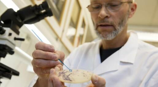 Indestructible bacteria threaten cancer patients