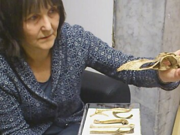 Anne Karin Hufthammer holds up the cranium of the Great Auk. (Photo: Andreas R. Graven)