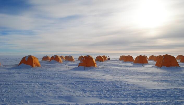 Bacteria thrive on methane deep beneath the Antarctic Ice Sheet