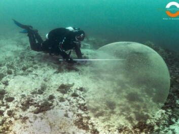 A diver is seen here after coming across one of the large spheres. (Photo: Ronni Bless Bekkemellem)