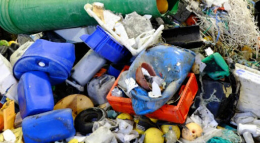 How knowledge can reduce ocean waste