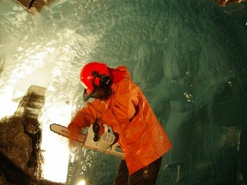 Miriam Jackson takes ice samples with a chainsaw under the glacier. (Photo: Halfdan Benjaminsen / NVE)