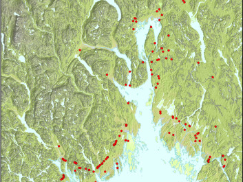 The map shows Stone Age settlements in the Oslo fjord region. (Image: Solheim, Persson: Early and mid-Holocene coastal settlement and demography in southeastern Norway: Comparing distribution of radiocarbon dates and shoreline-dated sites, 8500-2000 cal. BCE)