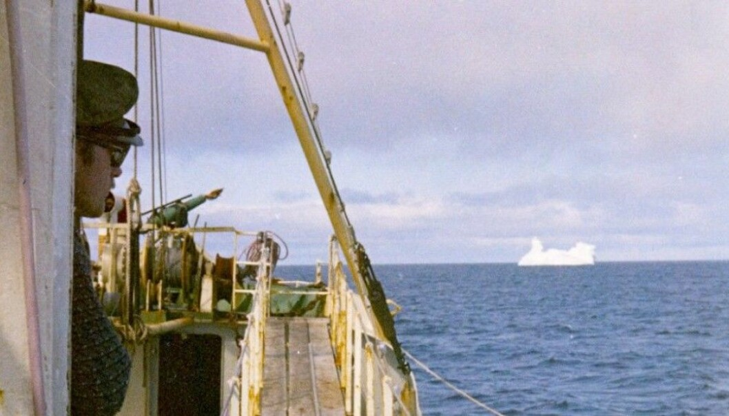 Åsmund Bjordal, who found the 1971 report by coincidence, was a crewmember on a whaling ship off the coast of Labrador in 1970. This photo shows the harpoonist in the wheelhouse when the vessel M/V Landkjenning was near Greenland. (Photo: Åsmund Bjordal)