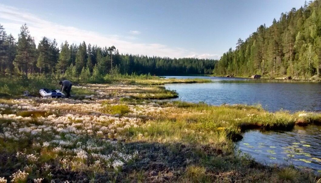 Lakes in Norway, Sweden and Finland and elsewhere across the northern hemisphere have become browner over the years, stained by dissolved organic carbon. (Photo from the research article)
