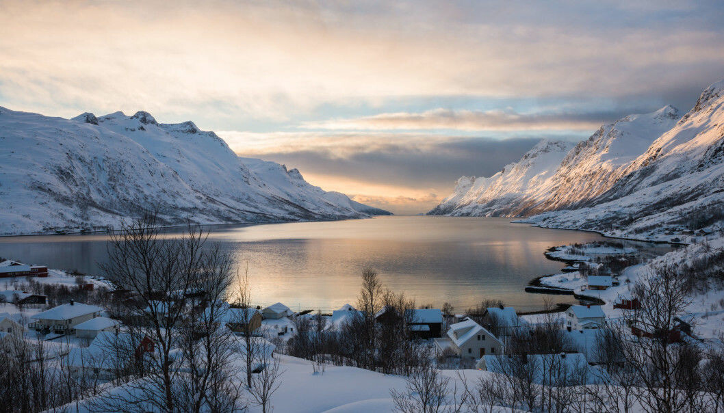 It's hard to know exactly how climate change will affect the Norwegian environment, because so many non-climate factors can also play a role. But there are some clear trends. (Photo: Yongyut Kumsri / Shutterstock / NTB scanpix)