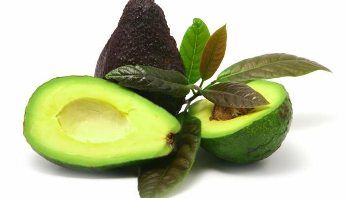 Multi-resistant bacteria fear avocados