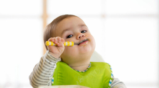 Baby's gut bacteria might predict obesity