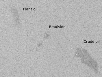 Satellite radar imagery showing an echo from three different types of oil slicks: A spill consisting of plant oil (top left), an emulsion of water and organic oil (center) and crude oil slick (bottom). The image was captured during an oil spill containment drill in the North Sea. (Image: RADARSAT-2 Data and Products © MacDONALD, DETTWILER AND ASSOCIATES LTD. (2011) − All Rights Reserved. The picture was delivered by KSAT, Tromsø)