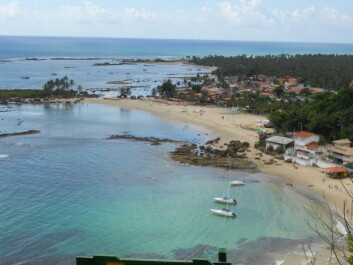 Morro de São Paulo, state of Bahia, Brazil. You can see human occupation adjacent to the fringing coral reefs. The shoreline protection provided by the reef is crucial for the nearby town. (Photo: Author Provided)