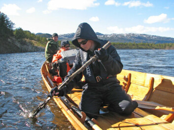 Scientists can listen to signals from salmon wearing transmitters. From front to back: Elina Halttunen, Jan Davidsen and Amund Suhr. (Photo: Audun Rikardsen)