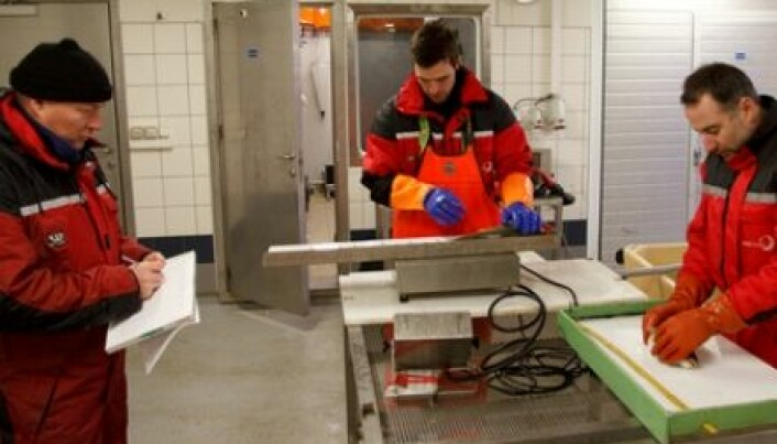 Helping farmers improve fish welfare