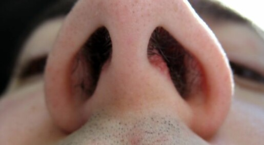 How important is the nose?