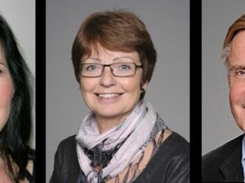 Three dental experts and professors at the University of Oslo. From left: Janne Reseland, Anne Bjørg Tveit and Morten Rykke (Photo: University of Oslo)