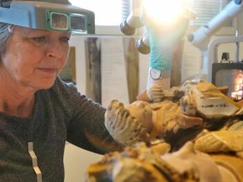 Mille Stein, a painting restorer and researcher at NIKU, restoring the Holdhus Madonna. (Photo: Arnfinn Christensen)