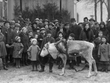 """Trygve Danielsen with reindeer in Odense, circa 1933"" (Source: private photo)"
