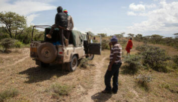 The African wild dog project crew out on the job. (Photo: Per Harald Olsen, NTNU)