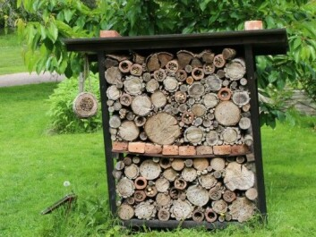An insect hotel at the University of Oslo's Botanical Garden. The university's Natural History Museum has plans to set up a number of insect hotels to study their usefulness. (Photo: Dag Inge Danielsen)