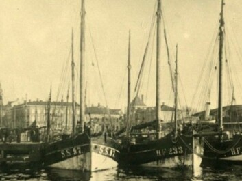 "German fishing boats located in Strømstad harbour in 1922, heavily loaded with spirits to be smuggled into Norway. The port was the main base for Norwegian-Swedish alcohol smugglers. Swedish law did not specifically prohibit the trade. Goods were loaded onto fast Norwegian smuggling vessels. The business was so extensive that Strømstad's port charges more than doubled during the period. The Grand Hotel in the city was a meeting place for Norwegian ""alcohol barons"" and foreign sellers and was colloquially known as the ""Spirits Hotel"". (Photo: Gunnar Thorén, Strømstad Museum)"
