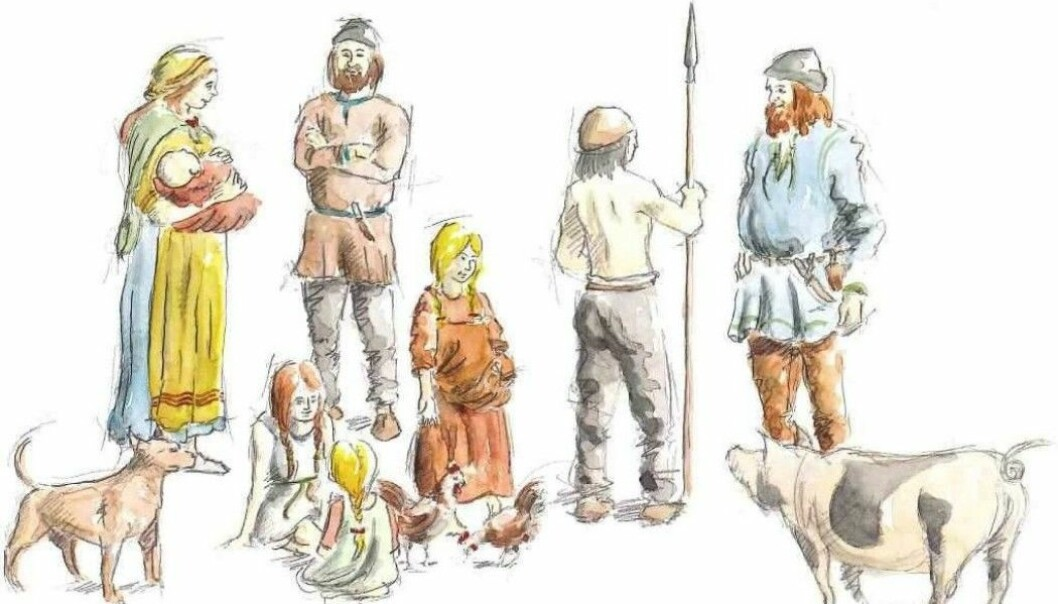 "Scientists often imagine that men's and women's roles during the Viking Age were clearly differentiated, archaeologist Marianne Moen says. ""The illustrations show women making food and holding children, while men were active, in battle,"" she says. But maybe this wasn't the way things were. The illustration is from ""Vikinger i vest"" (Vikings in the West), published in 2009. (Illustration: Peter Duun)"