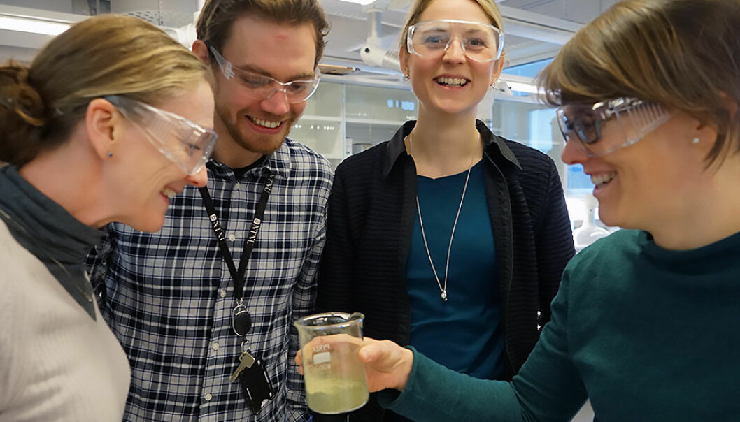 NTNU researchers Fride Vullum-Bruer, Andreas Nicolai Norberg, Kristin Lønsethagen and Susanne Jäschke are working to establish a prototype from algae materials that industry can bring to mass production. (Photo: Mona Sprenger)