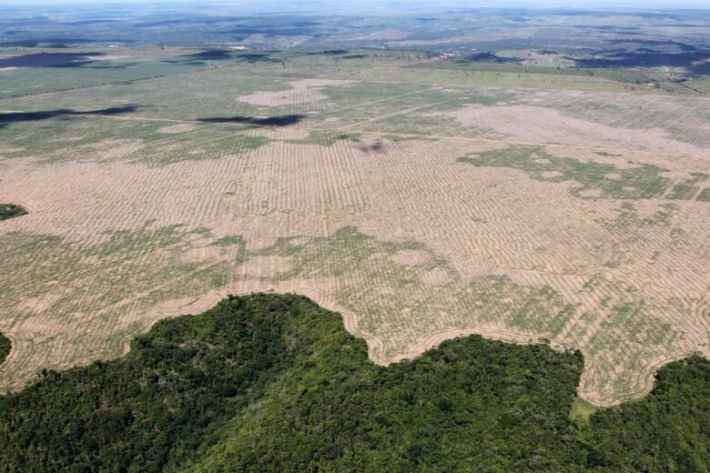 Deforestation in the Maranhão state of Brazil (Photo: Felipe Werneck - Ascom/Ibama, CC BY 2.0)