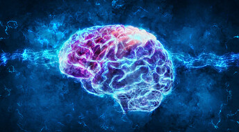 Electric shock treatment increases volume in large parts of the brain