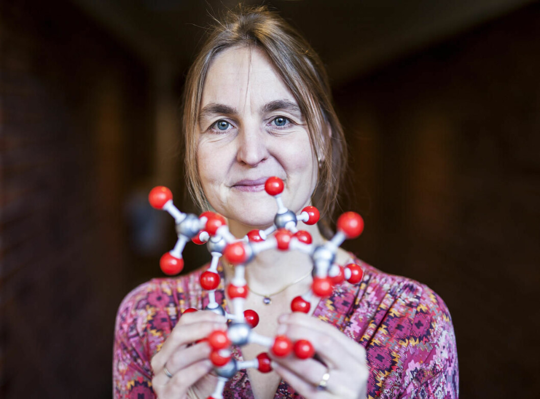 """""""A support like this makes you committed,"""" says Professor Bodil Holst. In 2007, she became the first researcher to recieve a Trond Mohn Foundation Recruitment Grant. (Photo: Ingvild Festervoll Melien)"""