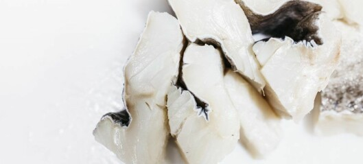 Would you like salt fish or klippfisk for dinner today?