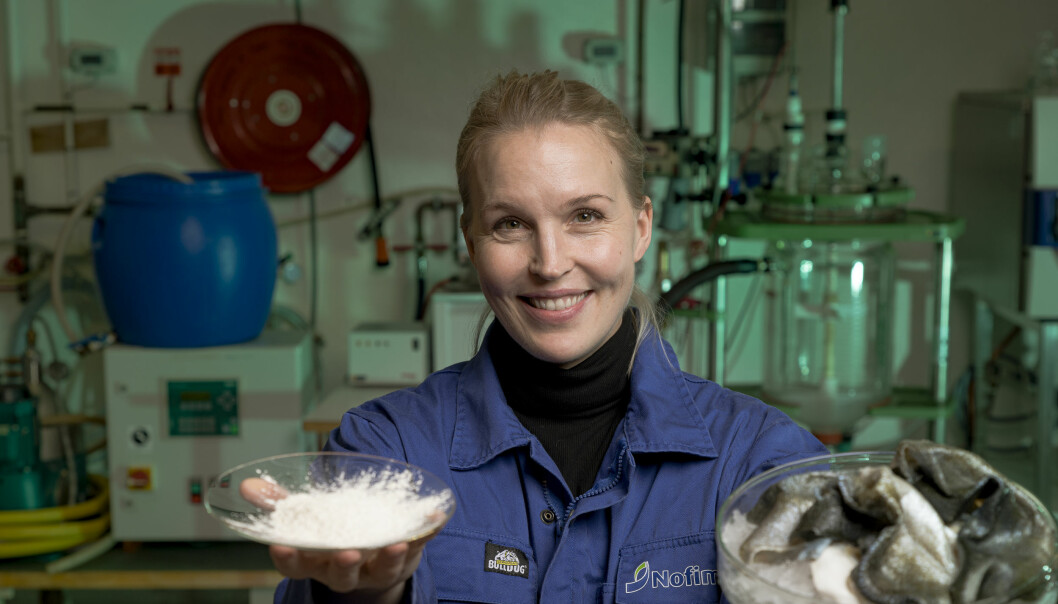 The collagen market is about to grow even bigger, now that Kjersti Lian and her team can extract this protein from several new species.