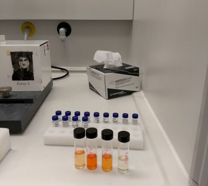 Lipid extracts from different sources and in different concentrations