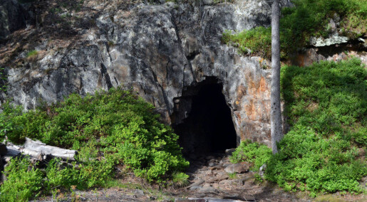 The Kongsberg mines are famous for their beautiful native silver. Researcher now claims they may also be full of gold.
