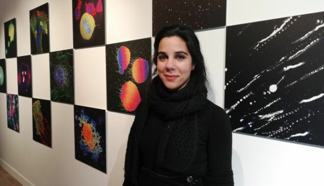 Irep Gözen displays colourful microscopy images.