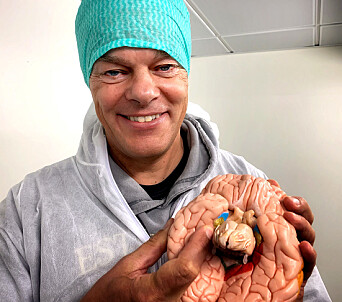 "A brain that has been deeply affected by Alzheimer's disease can shrink to the weight of an orange. ""We know where in the cortex the disease first manifests itself — deep in the brain in an area the size of a fingernail that is called the entorhinal cortex,"" says Edvard Moser."