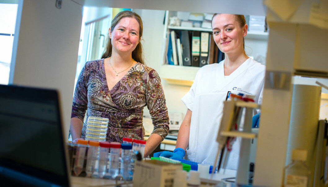 The universal flu vaccine has been tested in mice and is showing great promise. Pictured here are researcher Gunnveig Grødeland and doctoral research fellow Ane Marie Anderson.