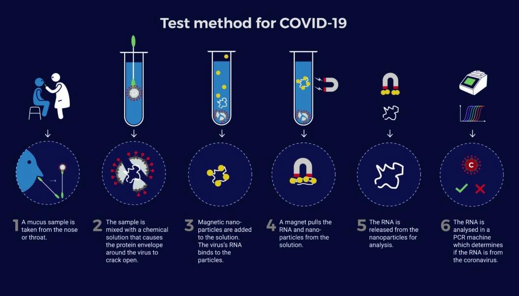 How the NTNU test works, step by step. Illustration: NTNU Technology Transfer