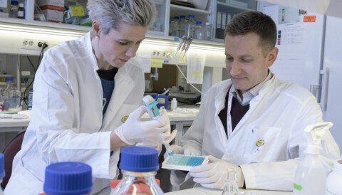 Norwegian-British cancer medicine to be tested on British COVID-19 patients