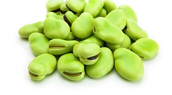 Norwegian beans can replace foreign soy