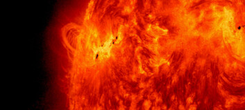 A new solar cycle may be underway