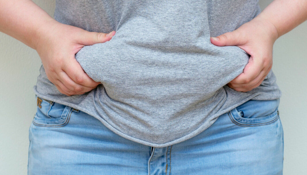 Certain genes put you at greater risk of developing obesity. Now, Norwegian scientists have studied mice to investigate what these genes actually do.