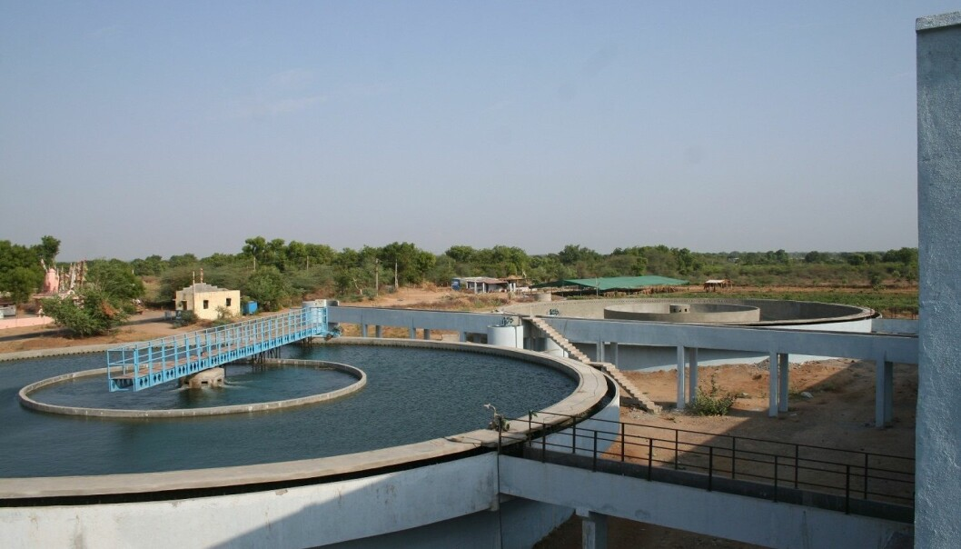 As wastewater treatment plants are better at reducing phosphorus compared to nitrogen, the imbalance between these two elements is changing on a worldwide level, particularly in developing countries.