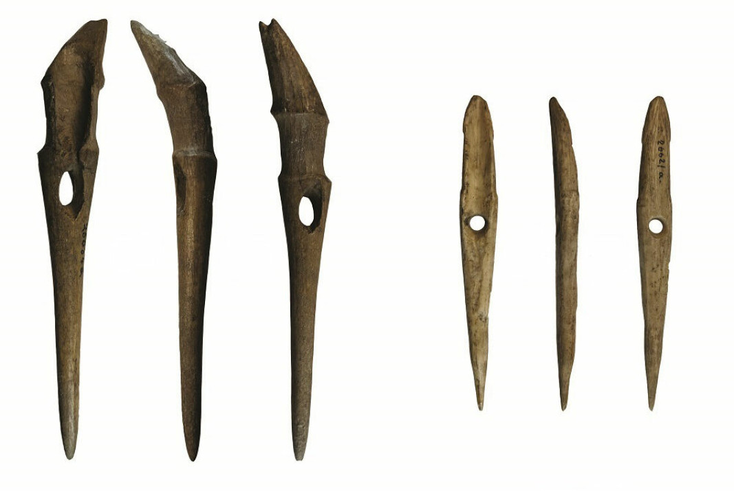 These are two of the harpoons that researchers found under the field at the Jortveit farm in southern Norway. They were probably in use sometime between 5700 and 4500 years ago.
