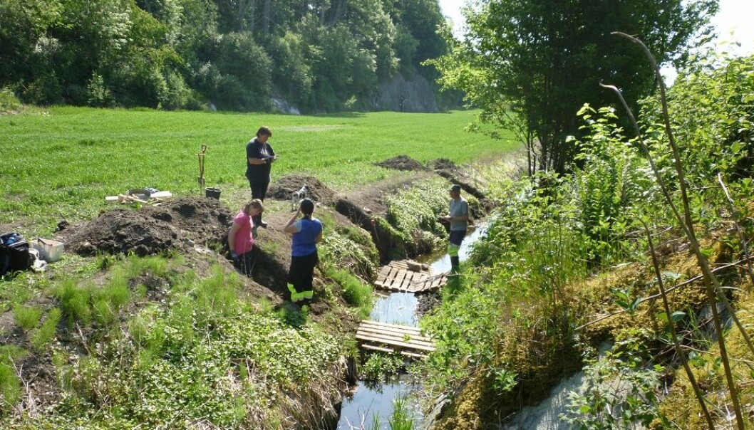 Researchers and students from the Museum of Cultural History have undertaken three seasons of archaeological digs in the old wetland on the Jortveit farm. Around 125 centimetres below the field's surface lies a layer of bluefin tuna bones.