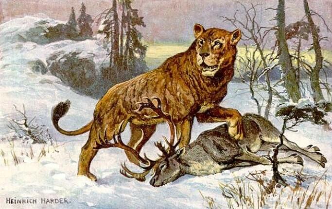 Artist Heinrich Harder's rendition of a cave lion.