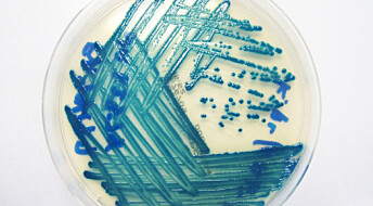 Small additives can make old antibiotics work again