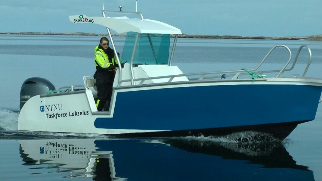 Lone Jevne's doctorate focused on ways to slow salmon lice infestation in fish farms. Here she pilots a Taskforce Lakselus boat from NTNU and the Blue Competence Centre (Blått kompetansesenteret) off of Frøya in Trøndelag.