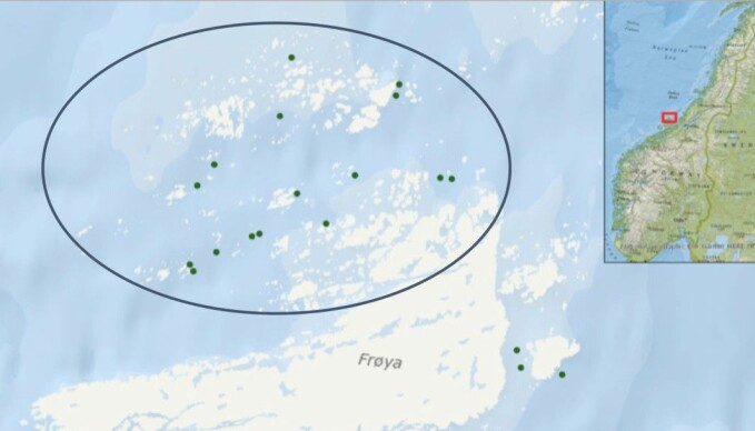 Lone Jevne, who has just completed her doctorate at the Norwegian University of Science and Technology (NTNU) studied lice infestations at 16 salmon farms on Frøya in Trøndelag over six years. There was lots of variation in how many cleaner fish were used at the different facilities, which made it possible for her to compare the effects the fish had on lice numbers.